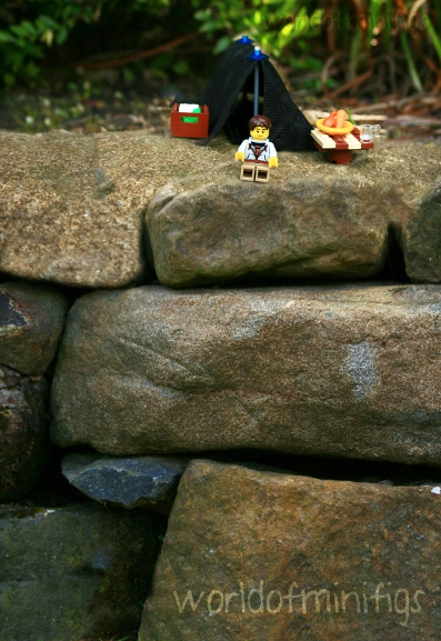 lego; photography; minifigs; minfigures; world of minifigs; worldofminifigs