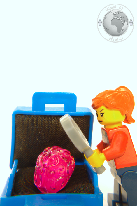 case; exploding brain; rachel hamilton; books; lego; photography; minifigs; minifigure; worldofminifigs; world of minifigs; book titles;