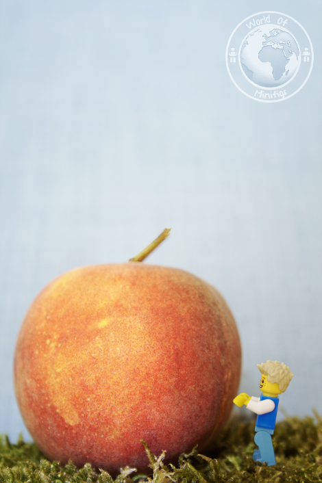 giant peach; james; roald dahl; books; lego; photography; minifigs; minifigure; worldofminifigs; world of minifigs; book titles;