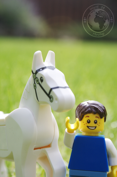 horse and boy; narnia; cs lewis; books; lego; photography; minifigs; minifigure; worldofminifigs; world of minifigs; book titles;